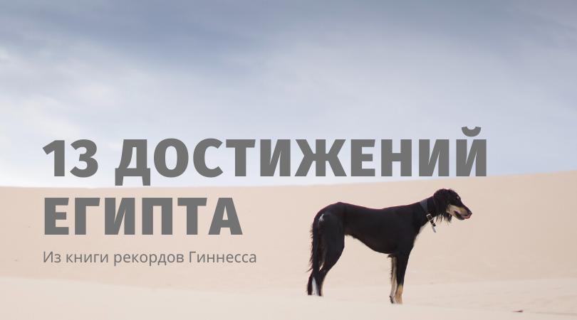 13 рекордов гиннесса из египта | karandasha.ru